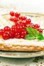 Pie  with Red currant Royalty Free Stock Photography