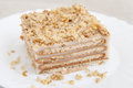 Piece of biscuit cake on plate white Stock Photography