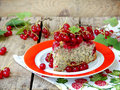 Piece of cake or sponge cake with red currants and poppy seeds