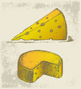 Piece cheese grunge style vector illustration Royalty Free Stock Image