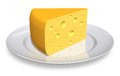 Piece of cheese on white porcelain plate Royalty Free Stock Photos