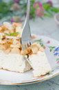 Piece of cottage cheese with apple pie with a fork Stock Image