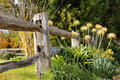 A piece of the garden rustic timber fence skirts Royalty Free Stock Photo