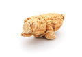 Piece ginseng white background Royalty Free Stock Photo