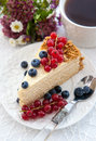 Piece of homemade honey cake with fresh berries decorated blueberries and red currants Royalty Free Stock Photo