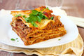 Piece of homemade lasagna selective focus Stock Image