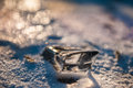 Piece of ice on a frozen lake under winter sun small depth sharpness Royalty Free Stock Image