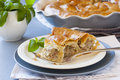 Piece of meat vertuta strudel traditional moldavian and romanian snail shaped pie Royalty Free Stock Photos