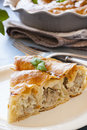 Piece of meat vertuta strudel traditional moldavian and romanian snail shaped pie Royalty Free Stock Image