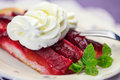Piece of plum cake one on a plate Stock Photography