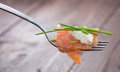Piece of Salmon on a fork Royalty Free Stock Photography