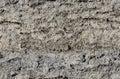 Piece of sediment cliff