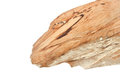 Piece of wood look like dragon head. Stock Photos