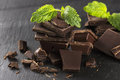 Pieces of dark chocolate and mint Royalty Free Stock Photo