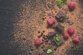 Pieces of dark chocolate, powder, drops and raspberries. Food dessert background. Royalty Free Stock Photo
