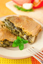 Pieces of spanakopita - greek spinach pie Royalty Free Stock Image