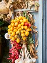 Piennolo tomatoes bunch in a greengrocer stall. Naples, Italy. Royalty Free Stock Photo