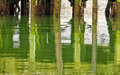 Pier reflected water oregon the patterns of wooden posts green and weathered in the quiet still of charleston harbor make an Stock Photography
