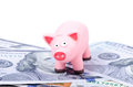 Pig on 100 bills Royalty Free Stock Photo