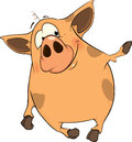 Pig cartoon lovely nice with stains Stock Images