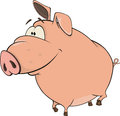 Pig cartoon pink cheerful thick with a tail Royalty Free Stock Photo