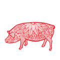 Pig- Chinese zodiac Royalty Free Stock Photo