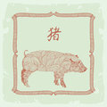 Pig- chinese zodiac sign Royalty Free Stock Photography