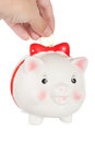 Pig coin box female hand lowers a in a Stock Photos
