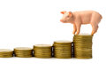 Pig on coins Stock Photo