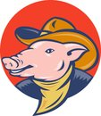 Pig cowboy hat and bandanna Stock Photos