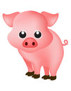 Pig cute pink isolated on white background clipart Stock Images