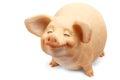 Pig Figurine Isolated White Ba...