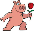 Pig Flower Royalty Free Stock Photos