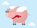 Pig Flying Royalty Free Stock Photo