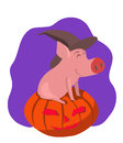 Pig in the gourd Royalty Free Stock Photography