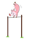 Pig hangs on a horizontal bar illustration of isolated Stock Images