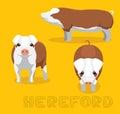 Pig Hereford Cartoon Vector Illustration