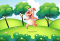 A pig at the hilltop illustration of Stock Photography