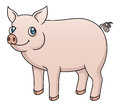 Pig illustration of a cartoon Stock Photo