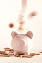 Pig money box with golden coins Stock Photos