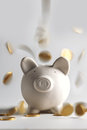 Pig money box with golden coins Royalty Free Stock Image