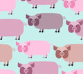 Pig seamless pattern. Background of animals. A herd of pigs Farm