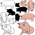 Pig Set Stock Photography