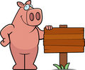 Pig Sign Stock Photo