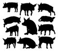 Pig Silhouettes Farm Animal Set Royalty Free Stock Photo