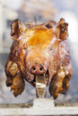 Pig on a spit Royalty Free Stock Photo