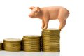 Pig on stack of coins Royalty Free Stock Images
