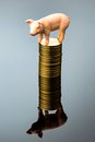 Pig on stack of coins Royalty Free Stock Photo