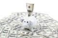 Piggy bank on the background of a stack of dollar bills Royalty Free Stock Photo