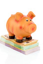 Piggy bank on banknotes a standing symbolic photo for economy profitability return Stock Images